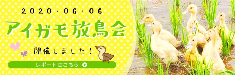 アイガモ放鳥会バナー