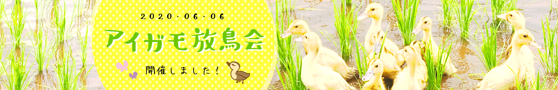 アイガモ放鳥会タイトル